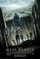 maze-runner-movie